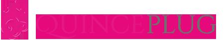 15Plug Logo
